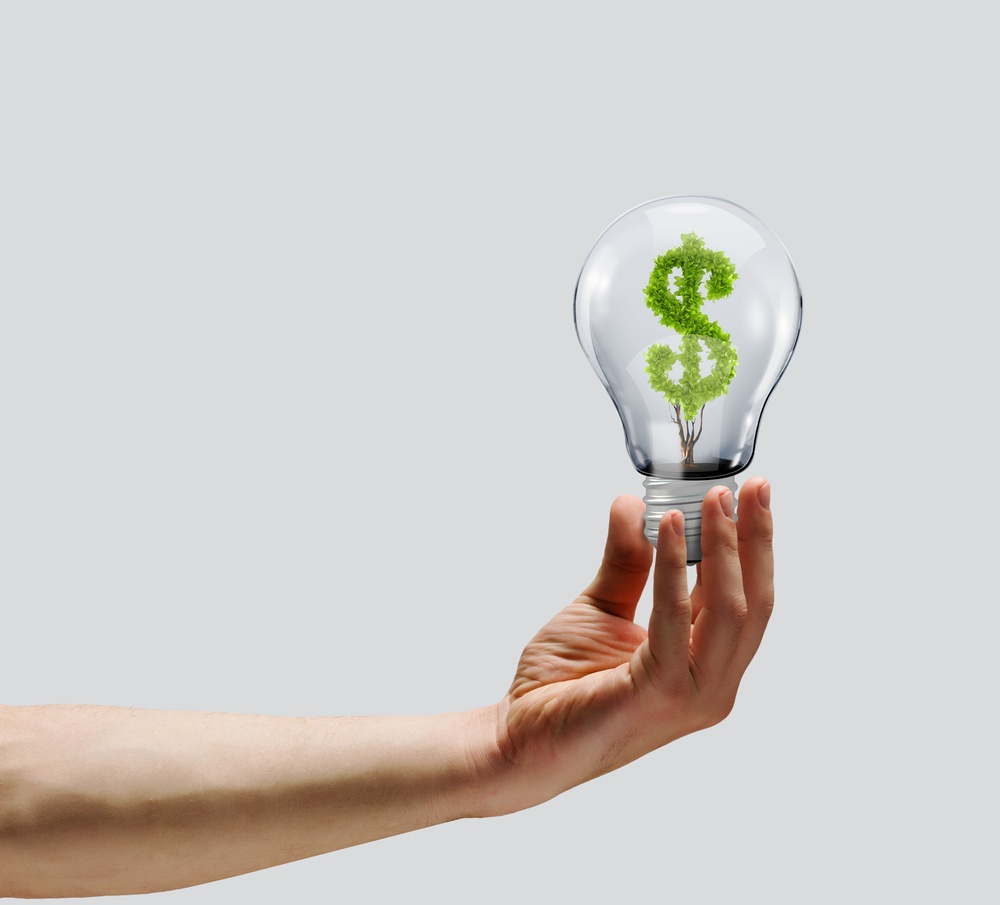 Human hand holding bulb with money tree inside. Wealth concept.jpeg